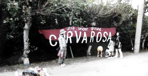 CURVA ROSA 2005